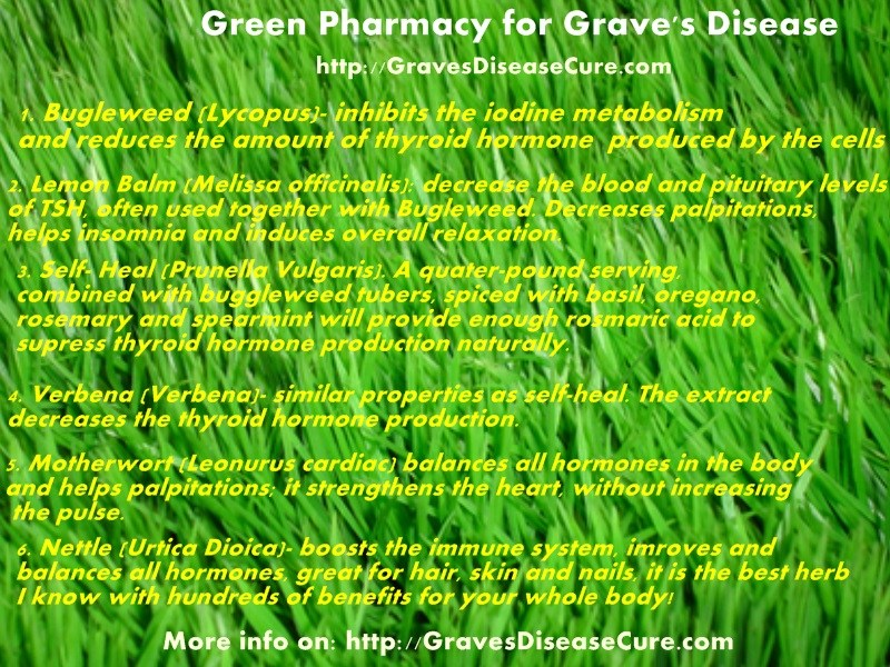 Green Pharmacy for Grave's Diseases